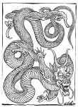 0gkc11289588102-filip_leu_dragons26