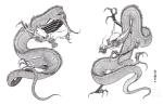 black-and-black-dragons-tattoo-img34