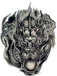 dragons_tattoo-294