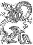 z44vi1289588090-filip_leu_dragons24