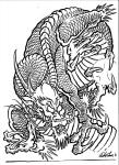 zpcl1289587911-filip_leu_dragons14